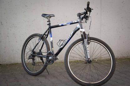 Rower Wheeler-wypożyczalnia
